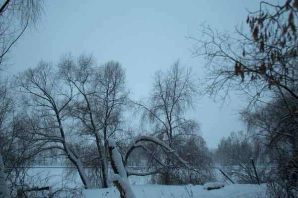 Зимние кружева - Щукино, Живописная ул.