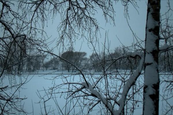 Зимние кружева (река) - Щукино, Живописная ул.
