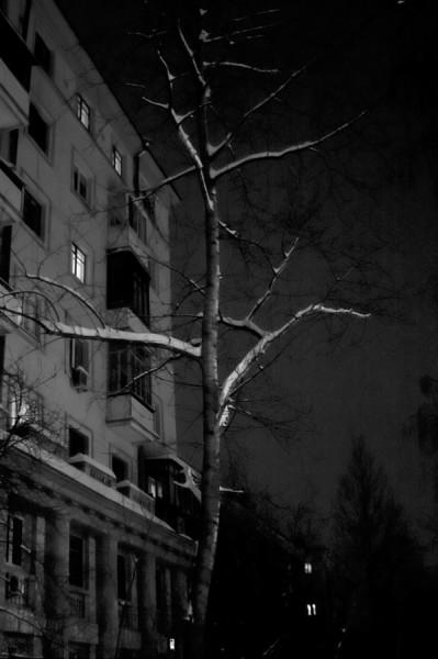 За окнами - ночь (Москва, Щукино, Живописная ул.)