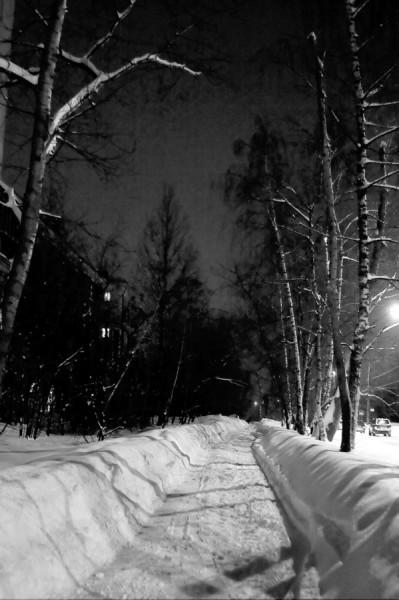 Аллеи темных снегов (Москва, Щукино, Живописная ул.)