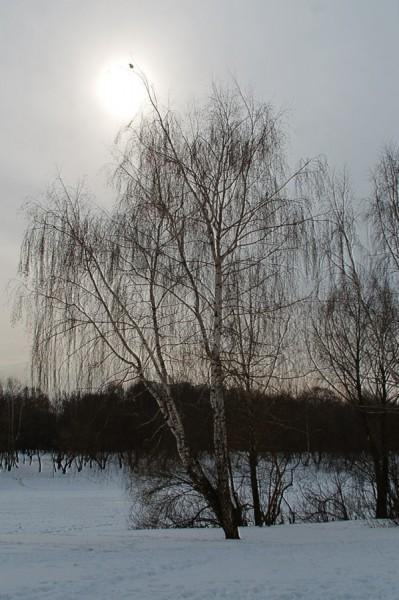 Навстречу Солнцу (Москва, Люблино)