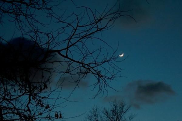 Лунный свет в морозном небе