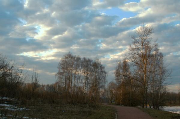 Предзакатное настроение (Москва, парк Северное Тушино)