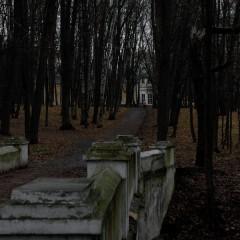 Сумерки осеннего парка