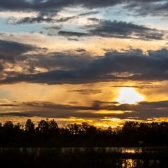 На закате тёплых дней. Лебяжье озеро, Дубна.