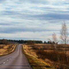 Дорога в осень. Вблизи Волоколамска