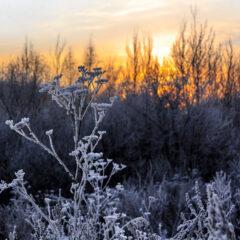 Закат во мгле холодной